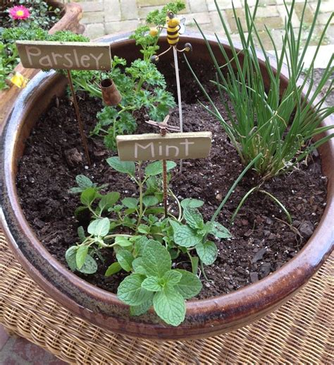 Potted Herb Garden Ideas Beautiful Container Herb Garden 8 Container Herb Garden Ideas Smalltowndjs
