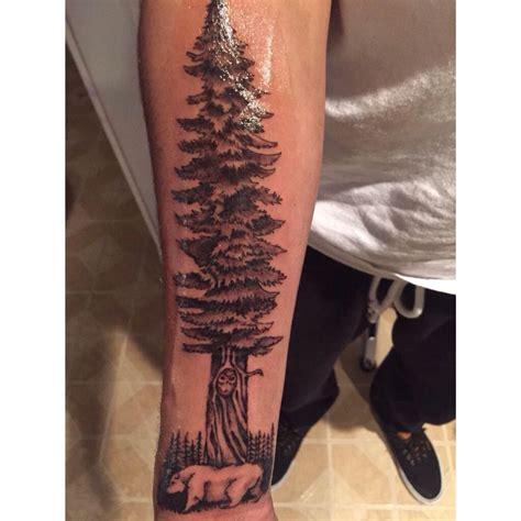 redwood tattoo california redwood tattoos redwood