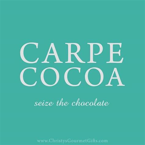 carpe cocoa seize the chocolate 40 recipes to celebrate chocolate sweet and spicy bark bites dips sauces truffles treats books carpe cocoa seize the chocolate chocolate quote