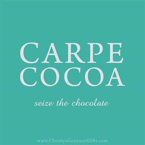 carpe cocoa seize the chocolate 40 recipes to celebrate chocolate sweet and spicy bark bites dips sauces truffles treats books 25 b 228 sta chocolate meme id 233 erna p 229