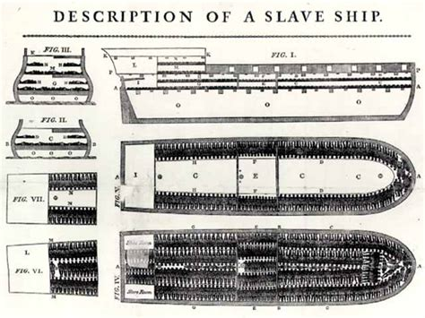 Ship Greyhound by Africans In America Part 1 Plan Of A Slave Ship Close Up