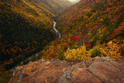 of virginia colors expose nature west virginia fall colors near blackwater