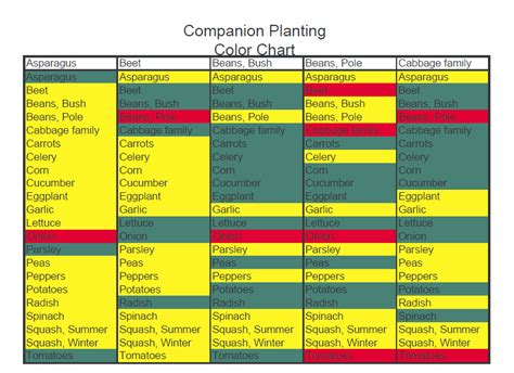 Vegetable Garden Companion Planting Chart Companion Gardening Layout
