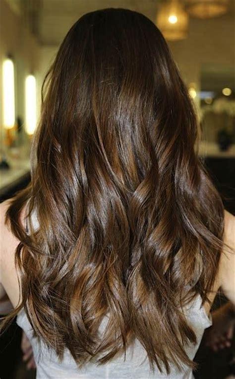subtle colors what are lowlights for brunettes subtle brunette