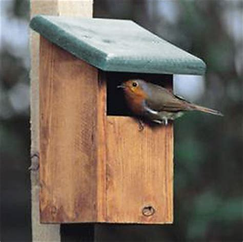 5 types of british bird nest box set up guide