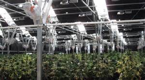 greengro introduces in a series of greenhouses that