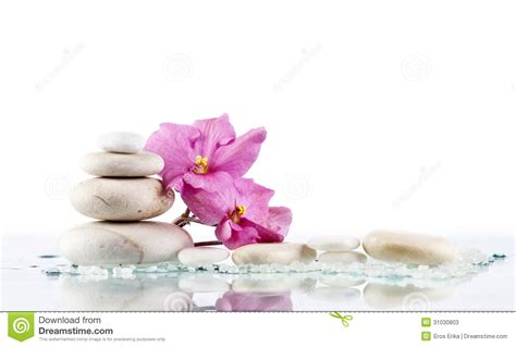 a fiori spa spa stones and pink flower on white background stock
