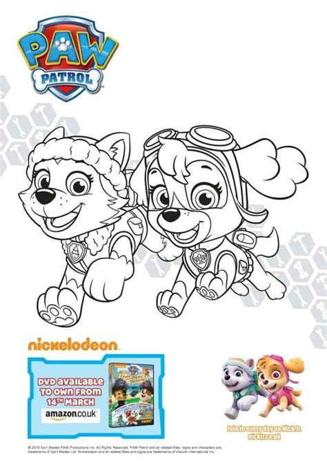 cursed pirate coloring book books paw patrol colouring and activity sheets pups and the