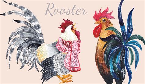new year 2016 metal rooster year of the rooster your 2017 horoscope