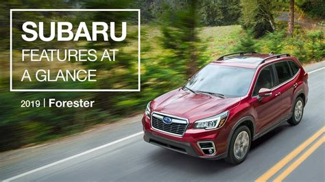 2019 subaru forester manual 2019 subaru forester is now your personal big