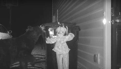 man  creepy motion activated clown doll  scare