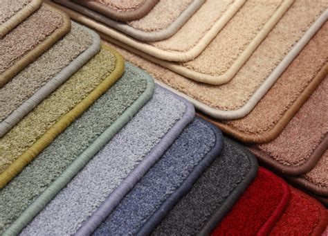 best carpet color how to choose the best carpet color for your homefloor