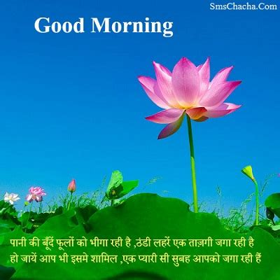 what is the meaning of shabbakair good morning sms messages and shayari status