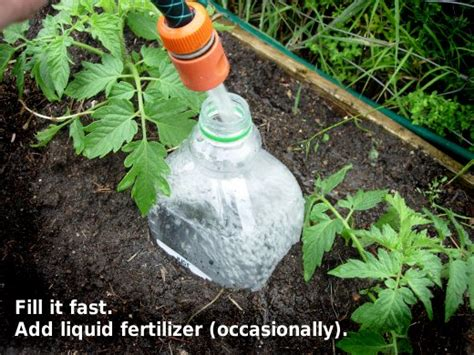 plastic bottle irrigation system overview for hyppo
