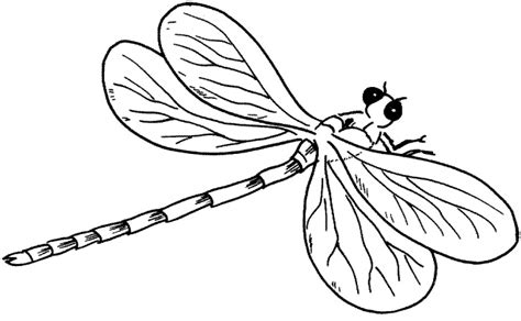 dragonfly template free dragonfly outline clipart clipart panda free clipart