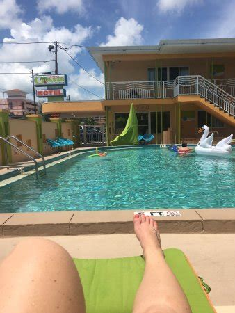 Harga Clear Water frenchy s oasis motel clearwater fl review hotel