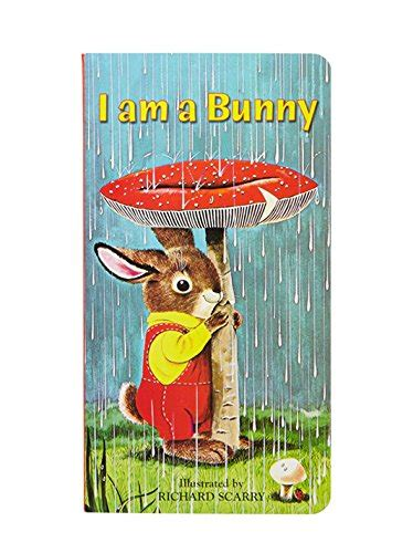 i am a mouse a golden sturdy book books i am a bunny a golden sturdy book book