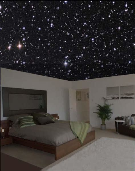 starry night bedroom fiber optic ceiling on pinterest ceilings home theatre