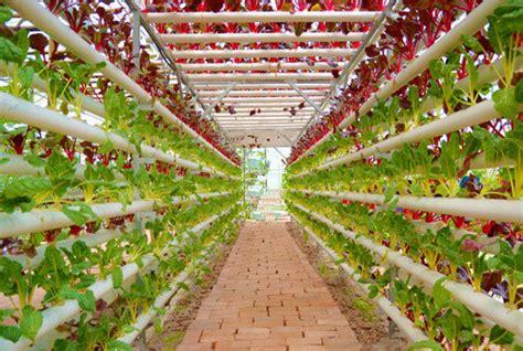 Vertical gardening hydroponic grow system hydroponics tubes buy vertical gardening hydroponic
