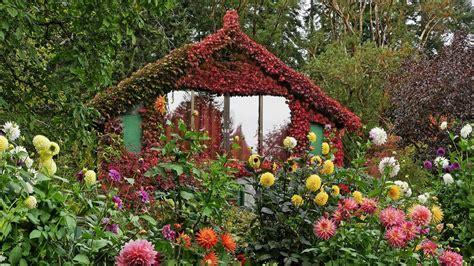 wallpaper flower house house of flowers wallpaper