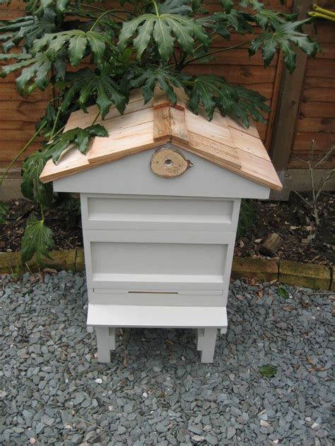 top bar bee hives for sale 1000 ideas about bee hives for sale on pinterest bee hives beekeeping and bee keeping