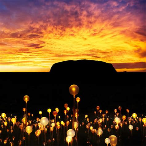a at field of light ayers rock day tours uluru sunset uluru travel