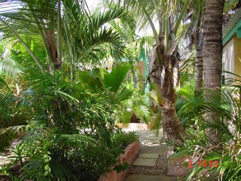 Palm Gardens by Coco Palm Garden Casa Oleander Home