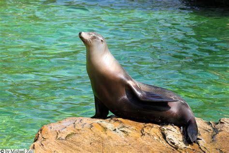 zoologischer garten öffnungszeiten zoo berlin spree athen