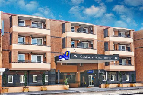 comfort suites and inn comfort inn suites burwood hotels accommodation