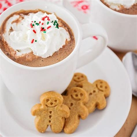 frozen gingerbread hot chocolate gingerbread hot chocolate recipe somewhat simple