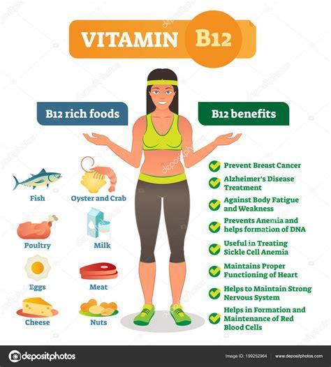 alimentos vitamina b 12 los iconos de alimentos ricos de vitamina b12 y lista de