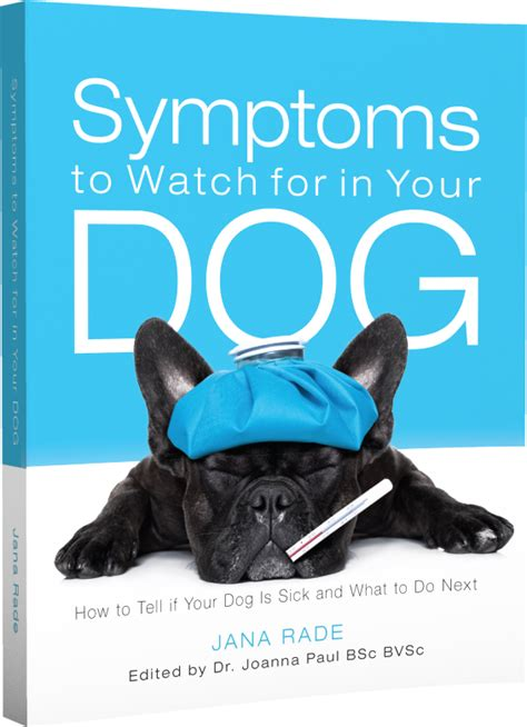 polydipsia in dogs symptoms to for in your excessive