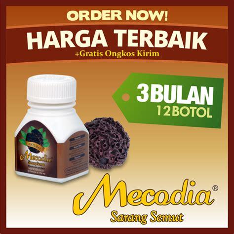 Sarang Semut Papua Asli Bpom Ri jual sarang semut papua obat kapsul sarang semut papua