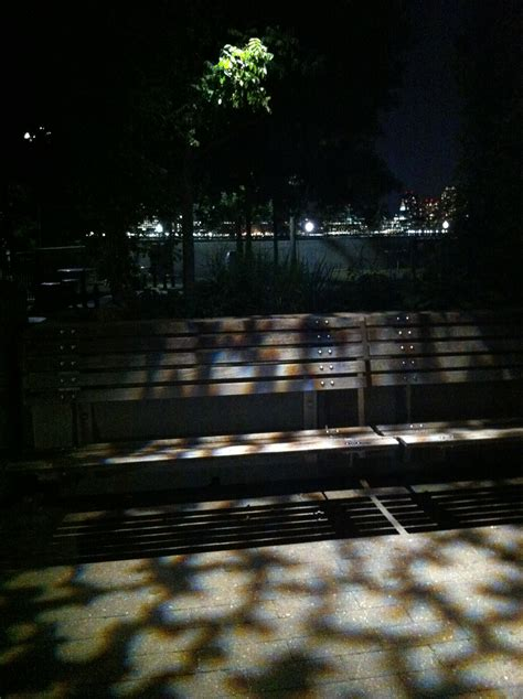 night bench june 2012 manicddaily