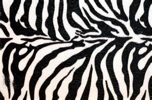 amper bae zebra print backgrounds zebra print party paper letterhead design zazzle