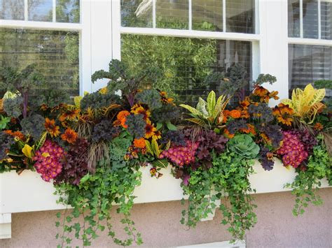 window boxes bring a fall garden to life home wizards