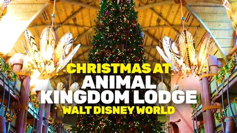 at animal kingdom lodge 2016 walt disney world