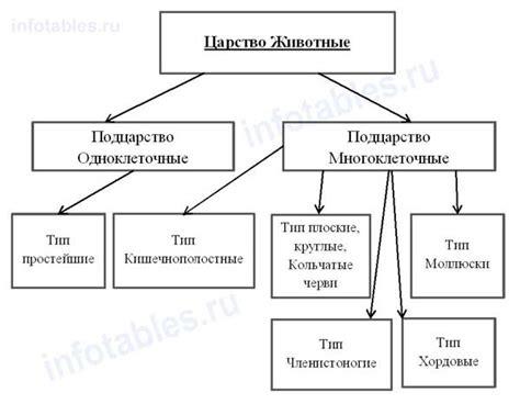 Схема описание животных вязание спицами
