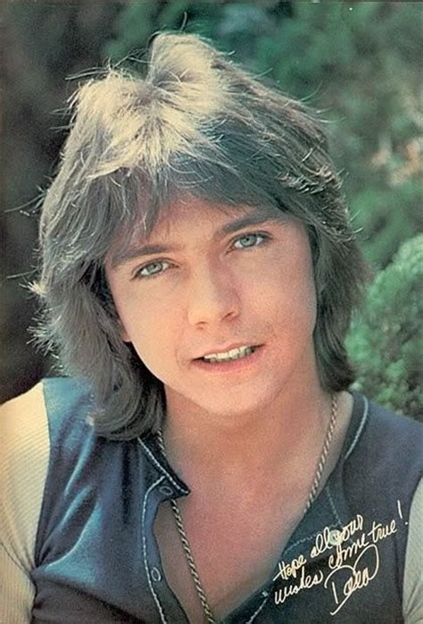 1970 1980 shag hair cuts 216 best images about david cassidy on pinterest shirley