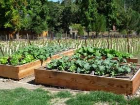 Vegetable garden how to build a raised bed vegetable garden box