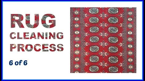 rug cleaners rochester ny rug cleaning rochester ny our process 6 of 6