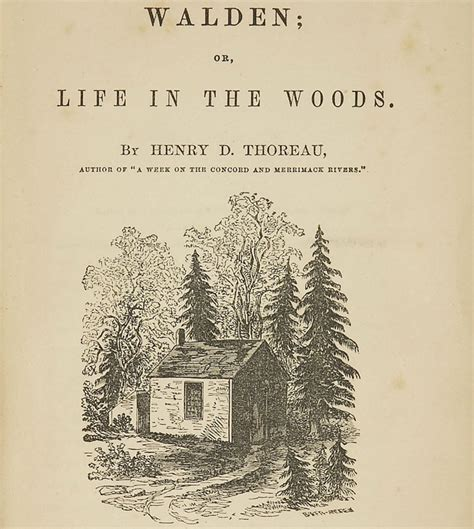 Walden In The Woods Book Summary