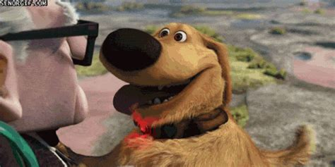 up film dog squirrel movie blah blah blah