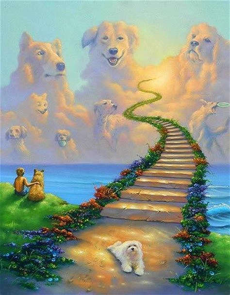 do all dogs go to heaven grieving the loss of your pet books 25 best ideas about rainbow bridge on