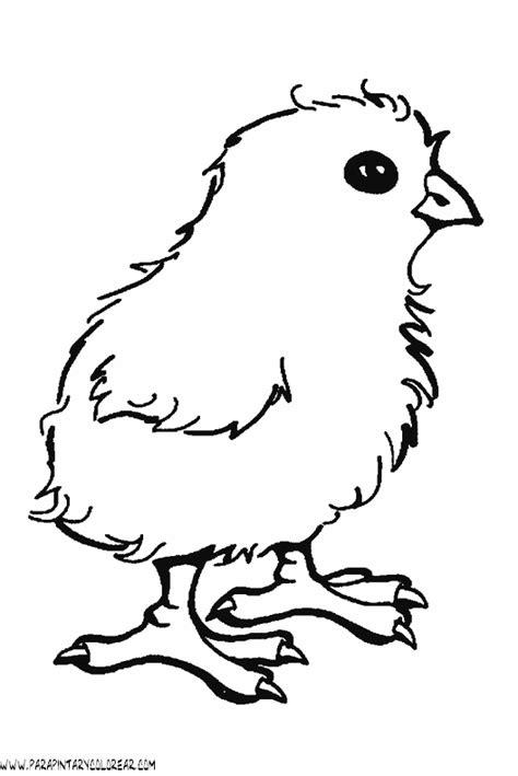 pollito en su cascaron colouring pages dibujos de pollitos dibujos