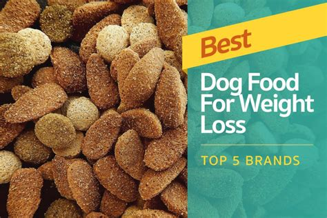 best weight best food for weight loss top 5 brands