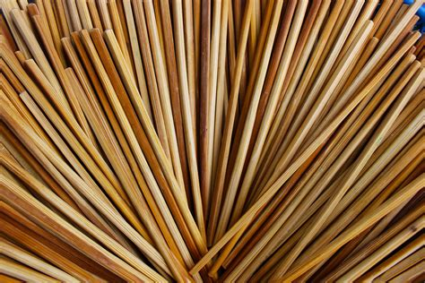 Free Images : utensil, cutlery, wood, sunlight, leaf