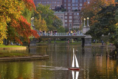 boston garden photograph by joann vitali