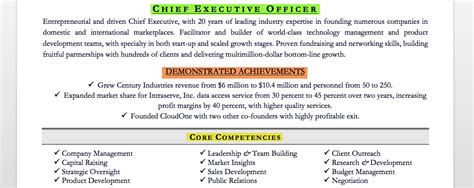 Executive Summary For Resume Examples by Executive Resume Examples Amp Writing Tips Ceo Cio Cto