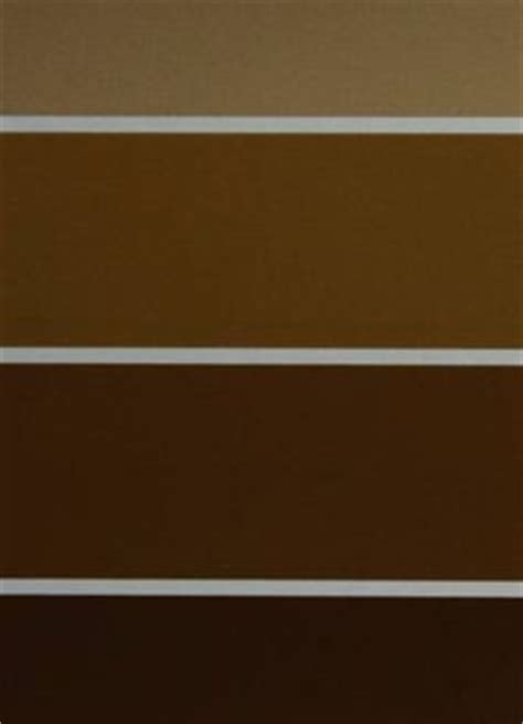 shades of brown paint 1000 images about paint colors on pinterest shades